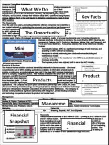 summary form