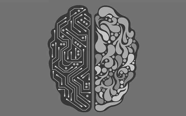 brain illustration with wires on one side and filled curves on the other side