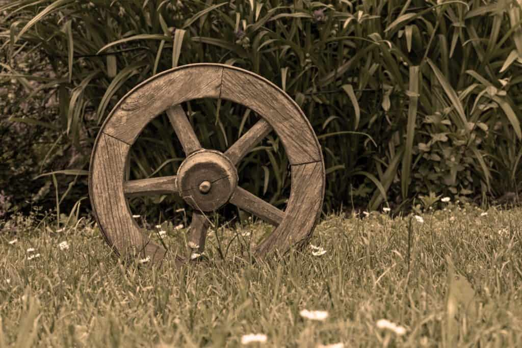 wooden wagon wheel in grass with dandelions in front of vegetation