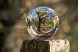 Crystal ball on a fence post in which we see a tree